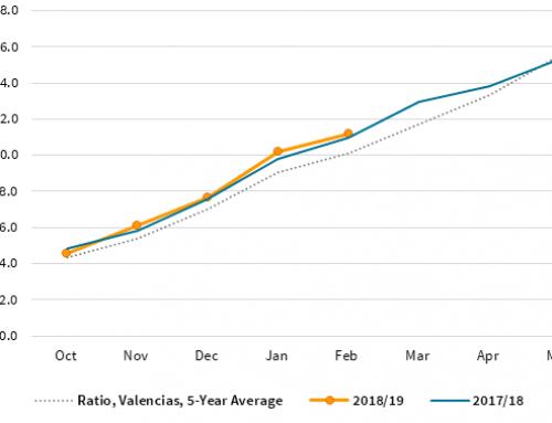 Florida orange production still at 77 million boxes