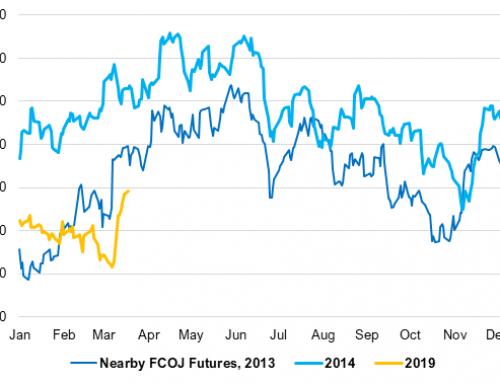 FCOJ market sees seasonal runup?