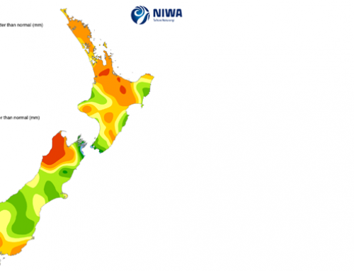 Weather continues to support bullish trend in Oceania dairy prices