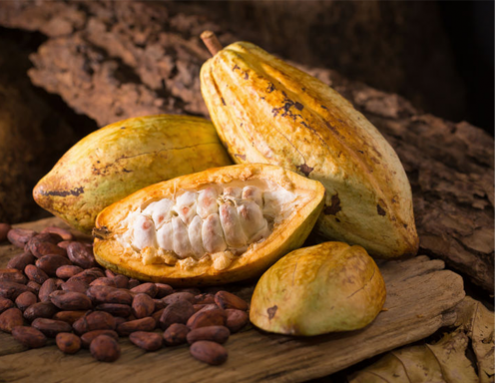 Could the U.S. ban Ivory Coast cocoa?