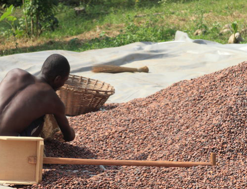 Could more African origins demand cocoa premium?
