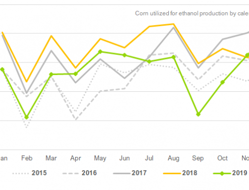 December corn use for ethanol rose 4 percent YOY
