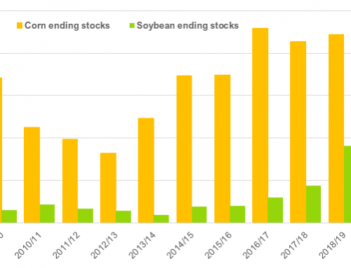 WASDE: Drop in use, stocks rise for corn, soybeans