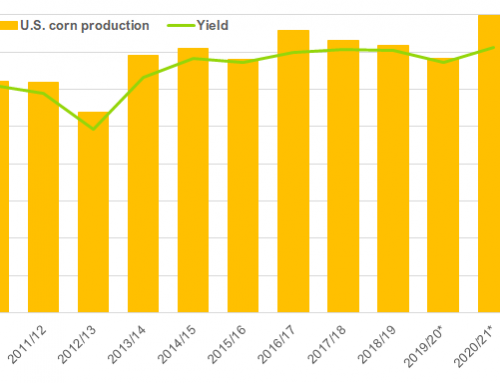 WASDE: Corn & soybean 2020/21 numbers released
