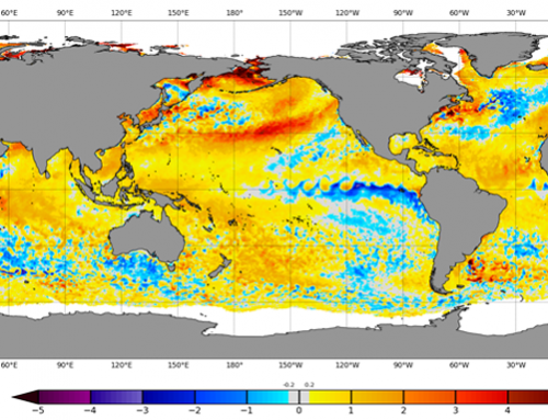 Latest sea surface temperatures may hold clues for upcoming cocoa season