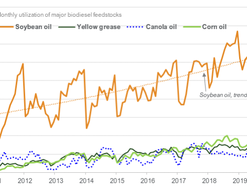 Record soybean oil use for biodiesel in May
