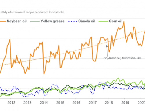 August biodiesel production up 5% YOY