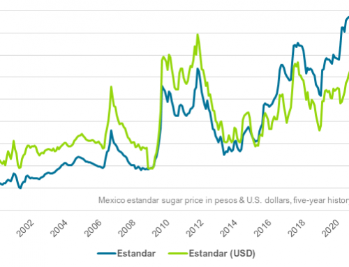 Estandar sugar pricing holds, refined holds steady early in Mexico campaign