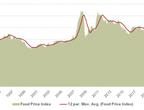 World Food Price Index up for 11th straight month