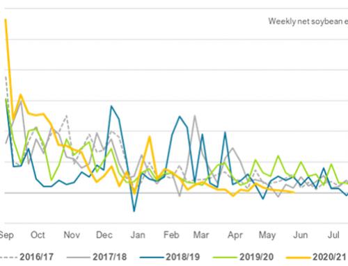 Soybean exports crawl toward summer