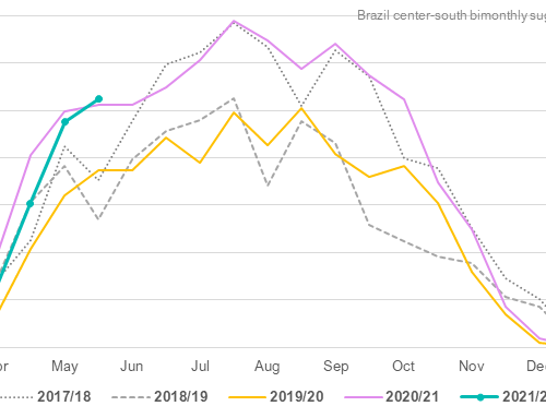 Brazil sugar output up slightly in late May, but sugar share slips further