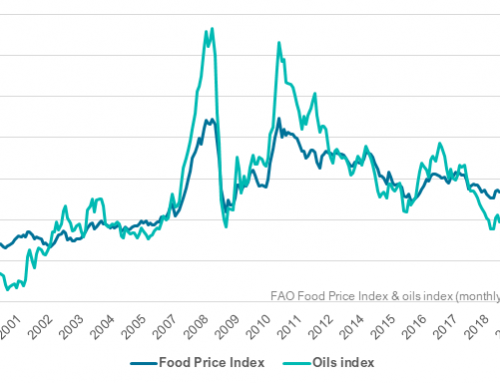 Finally a break for world food prices?